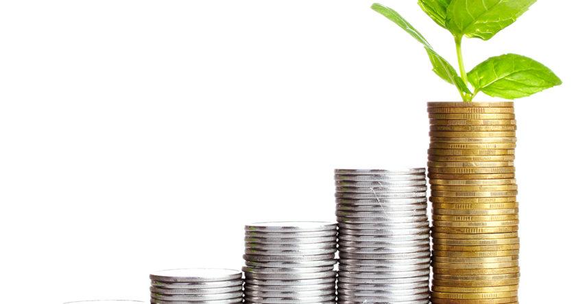 fast-acai-investimento-franquia