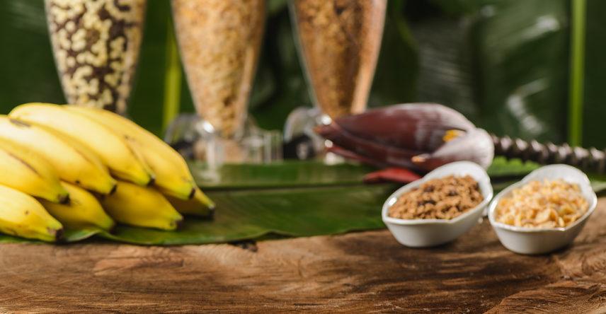 fotos de comida composição